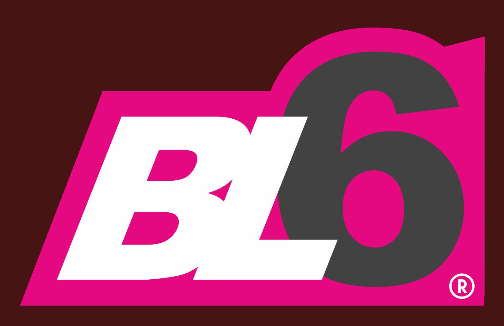 BL6.cz